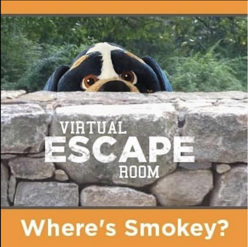 Logo for Virtual Escape Room Game
