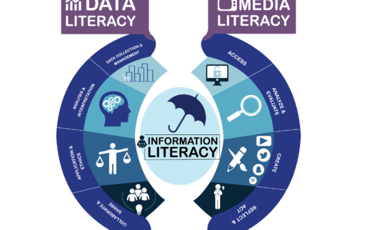 Media and Data Infographic surrounding information literacy
